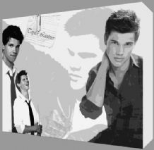 Taylor Lautner Twilight Canvas Art - NEW - Choose your size - Ready to Hang